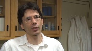 http://www.mcgill.ca/sustainability/channels/news/mcgill-professor-anthony-ricciardi-plastic-microbeads-st-lawrence-river-239251
